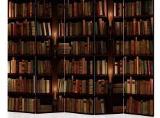 Paraván - Bookshelves II [Room Dividers]